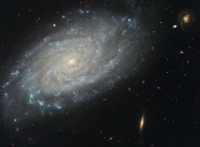 nasa finds blue star - HD